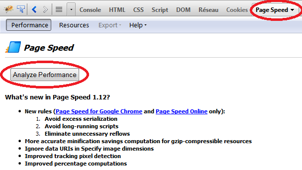PageSpeed pour Firefox