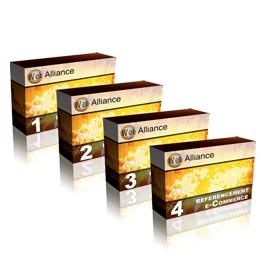 Janvier 2006 : Sortie des offres de référencement en 4 étapes pour la réussite des projets internes de nos clients