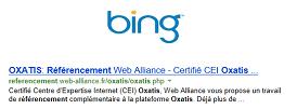 Référencement naturel Bing