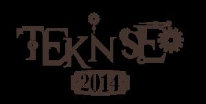 teknseo2014-2-300x152