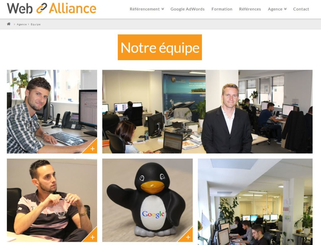équipe web alliance