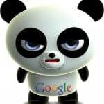 mise-a-jour-panda-google