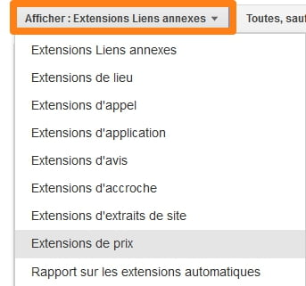 afficher-extension-adwords