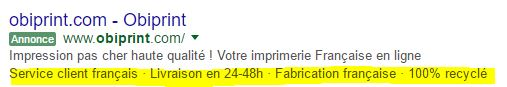 exemple-adwords-extension-accroche