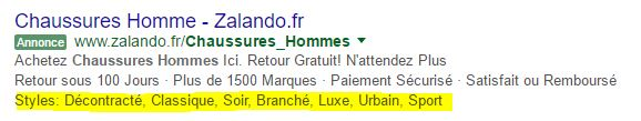 exemple-adwords-extrait-site