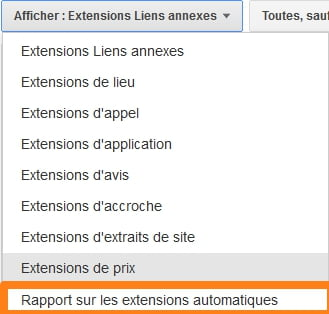 extension-automatique-adwords
