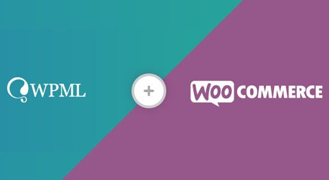 Extension WooCommerce référencement international