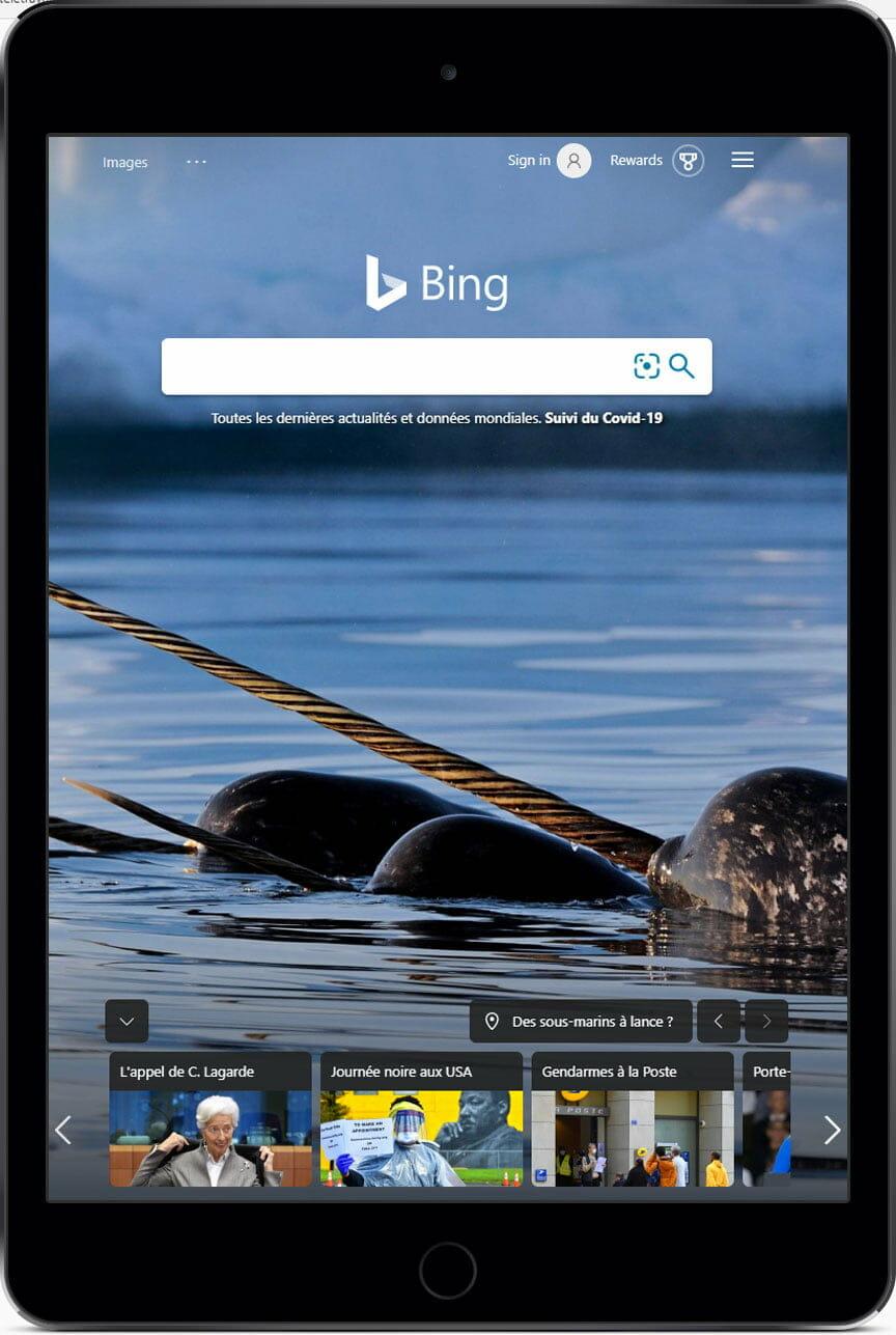 Résultats payants Bing
